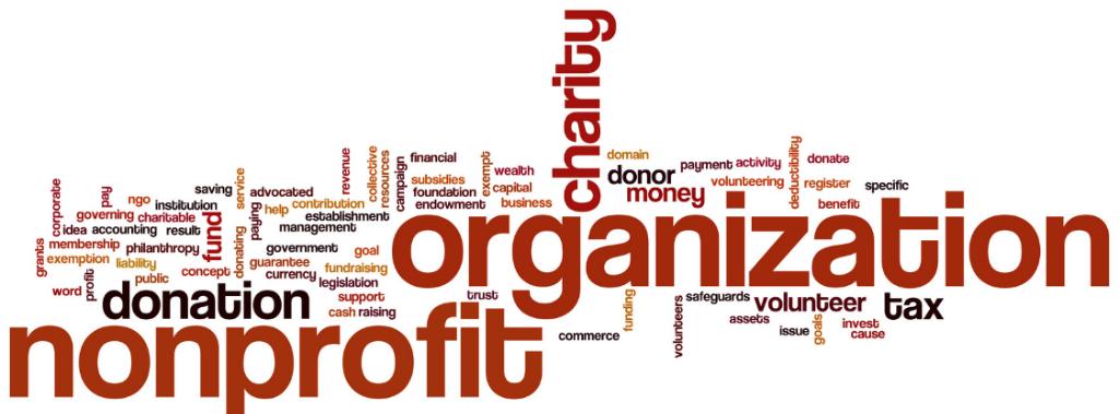 Dynamicsoft Non profit Program